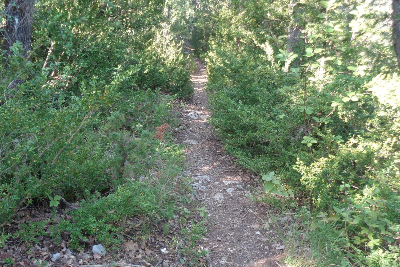 Sentier randonnée Drôme